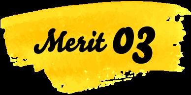 Merit03
